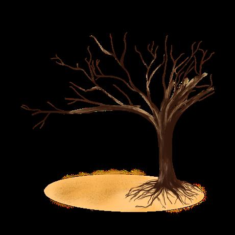 sát khí từ cây khô